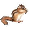 5e] Whips | RPGnet Forums